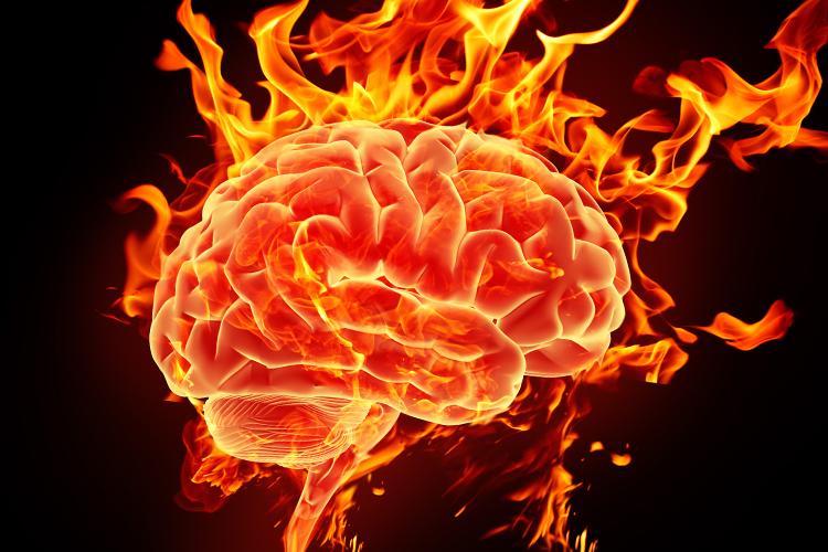brain_on_fire
